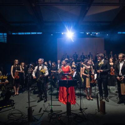 Ozvočenje NEXO koncert Tone Habjan z gosti v Železnikih